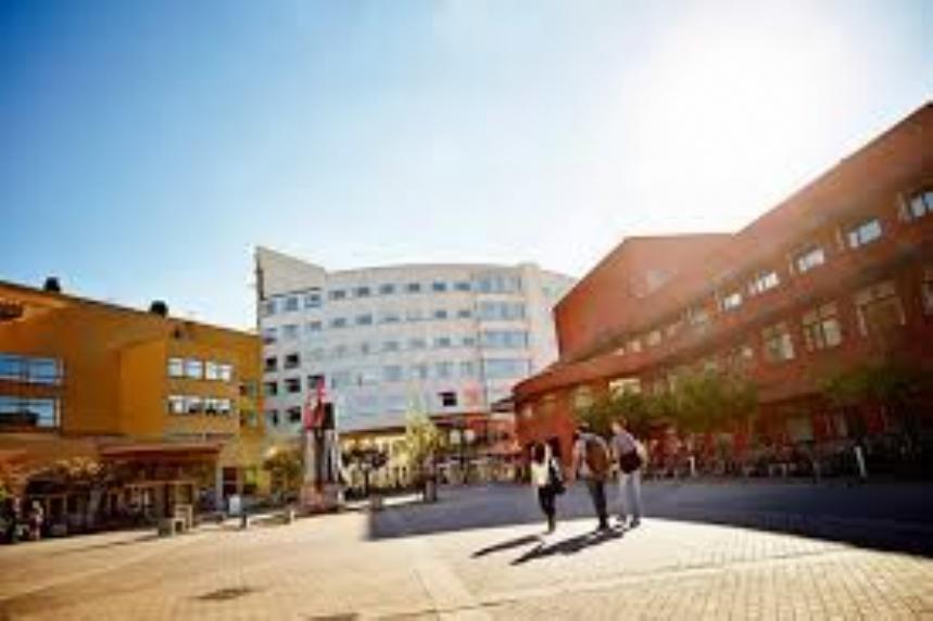 Riinvest Üniversitesi